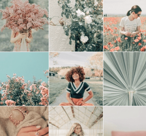 10 Ways To Edit Instagram Photos To Spice Up Your Page