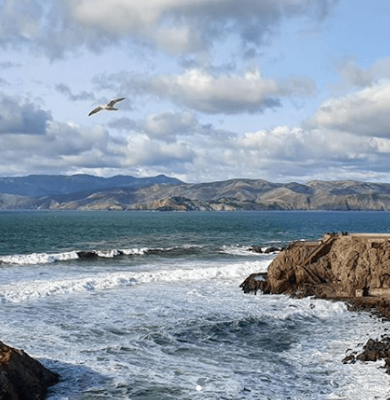 10 Activities In San Fransisco That Are Absolutely Free