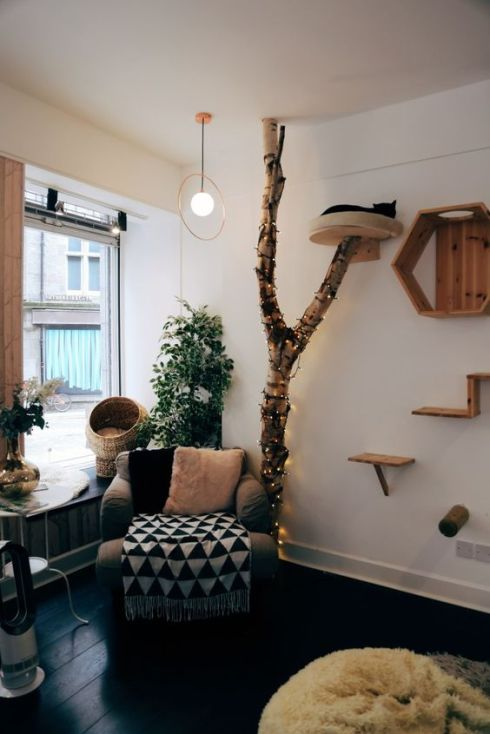 The 6 Sheffield Cafes You'll Never Want To Leave