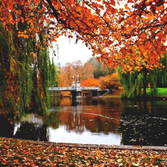 The Best Fall Break Spots To See The Autumn Foliage
