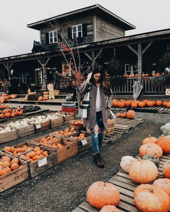 Why You Should Have Hayrides On Your Fall Bucket List