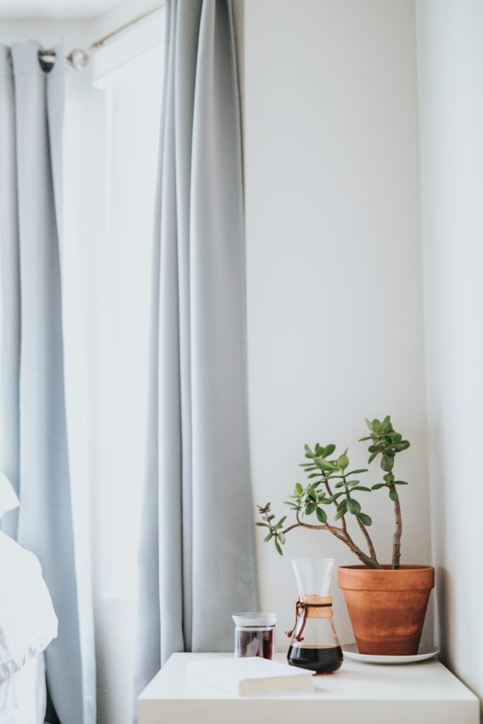 5 Cost Friendly Ways To Include Nature In Dorm Decor
