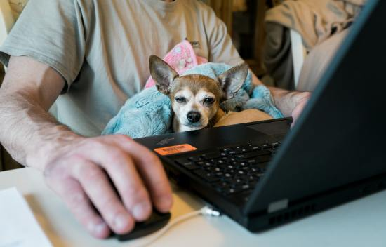 10 Tips for Working at Home and Staying Focused