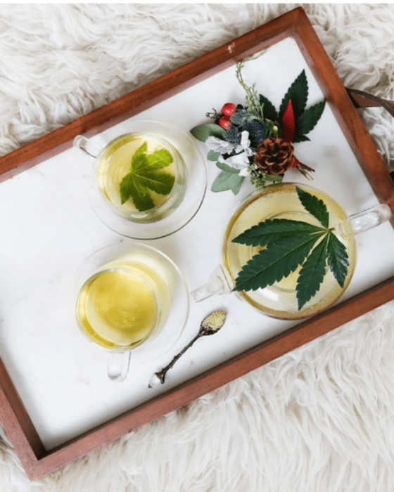 5 Reasons You Need To Try CBD Now