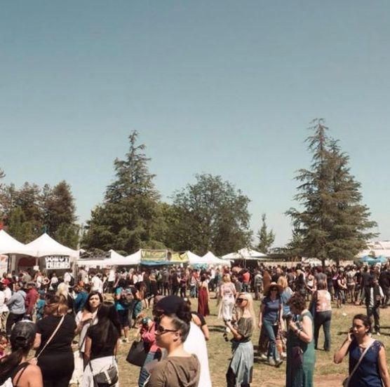Vegan Festivals Are All The Rage Right Now