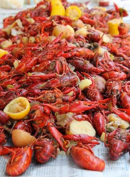 10 New Orleans Food Everyone Needs To Try