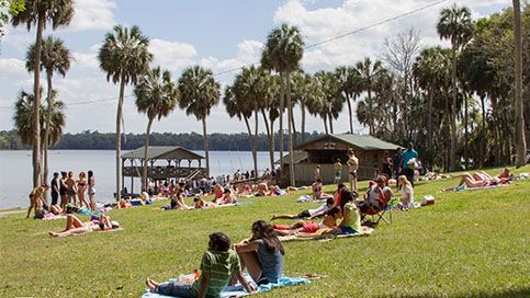 10 Free Things To Do Around University of Florida