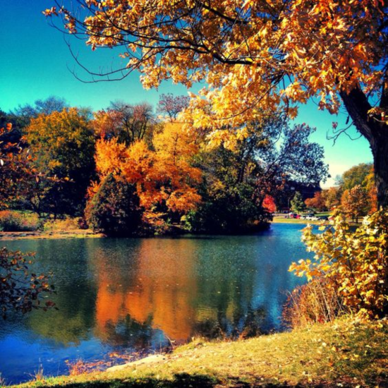 Best Places To Hang Out On Iowa State's Campus