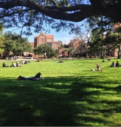 The Best Study Spots In Tallahassee That Aren't Strozier