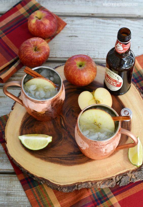 The Best Apple Cider Vodka Cocktail Recipes For You