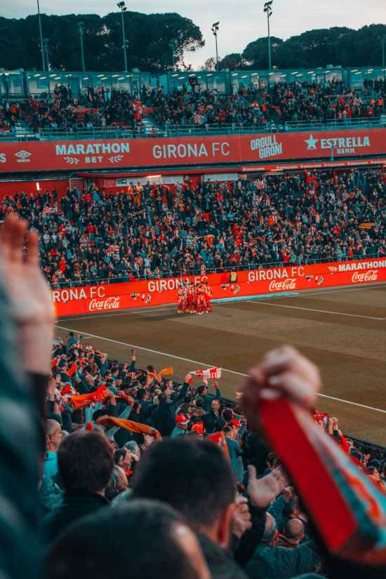 7 Signs That You're A Sports Fan