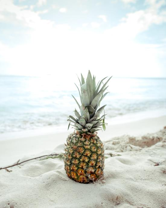 15 Food Items To Bring To The Beach