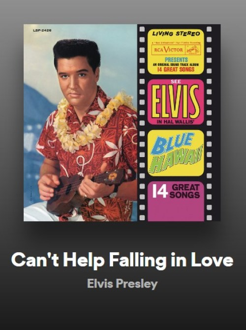 songs to cry to in the library