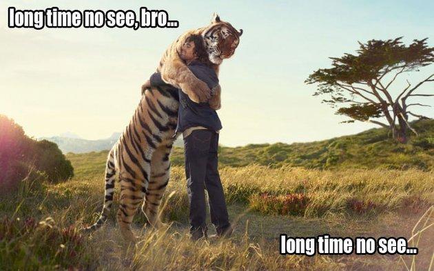 long-time-no-see