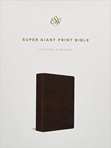 ESV Bibles for the Visually Impaired