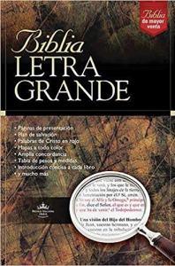 jumbo print spanish bible