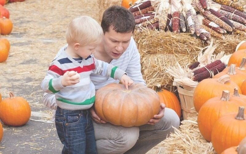 Christian Parenting on Halloween: An Opportunity For Teaching Kids About Community