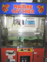 japan lobster vm