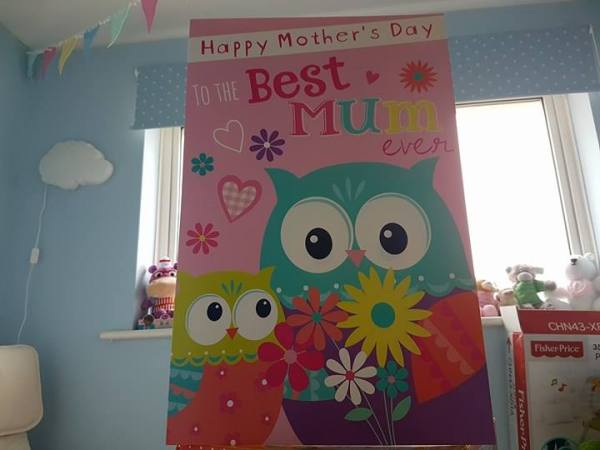 Huge-Mothers-Day-Card-Owls