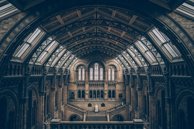 20 Of London's Unmissable Tourist Sights To Add To Your Itinerary Now | Natural History Museum