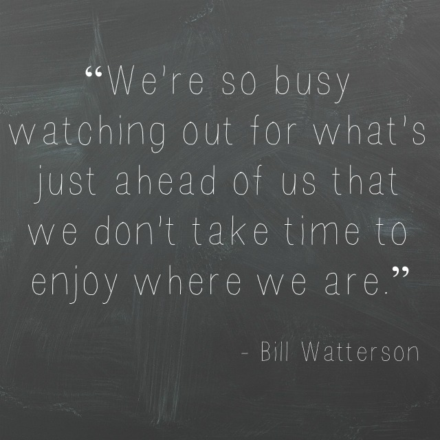 Bill Watterson quote
