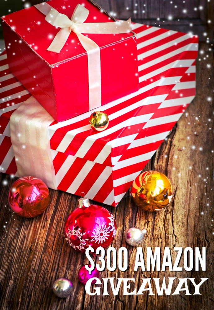 20 Christmas Gift Ideas For Anyone On Your List And A Fabulous Giveaway