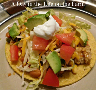 Turkey Tostados swith all the toppings served on a plate