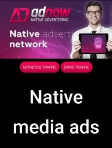 Top 10 Best Adsense Alternatives For New Bloggers in Hindi