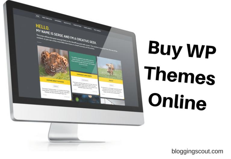 buy-wp-theme-online