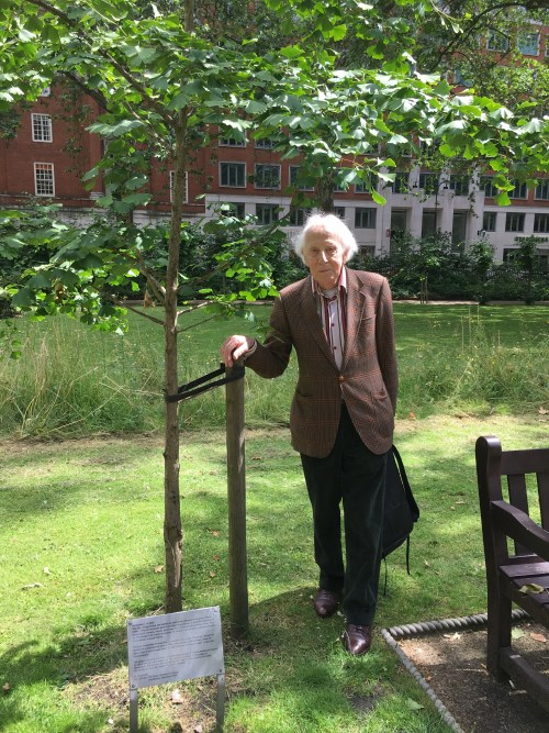 Cecil Woolf planted this Gingko biloba tree in Tavistock Square garden on Dec. 16, 2004, to commemorate the centennial of the arrival of his uncle Leonard in Colombo, Ceylon