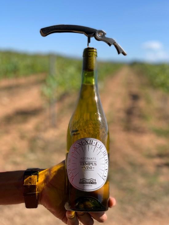 Botella de vino con sacacorchos, de fondo un campo de viñas