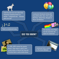 LiveJournal Infographic