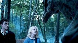 Entrevista al Director Técnico de Efectos Visuales de 'Harry Potter y la Orden del Fénix'