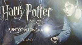 Nuevas Imágenes Promocionales de 'Harry Potter y las Reliquias de la Muerte Parte I'!
