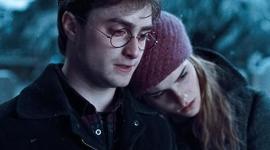 Crítica de HP7-Parte I: La Escisión de Harry (el Hermano y el Enamorado)