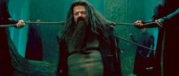 Robbie Coltrane Habla del Enorme Éxito de la Franquicia de Películas de 'Harry Potter'