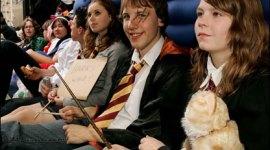 Únete a la Gran Maratón de 8 Películas de 'Harry Potter' en BlogHogwarts!