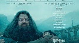 La Saga de Películas de 'Harry Potter' Termina sin Ningún Premio Oscar :(