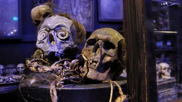 Harry Potter BlogHogwarts Artes Oscuras Tour Londres (11)