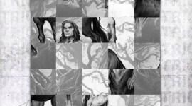 Pottermore Revela Primer «Truco» en su Cuenta Regresiva para Halloween