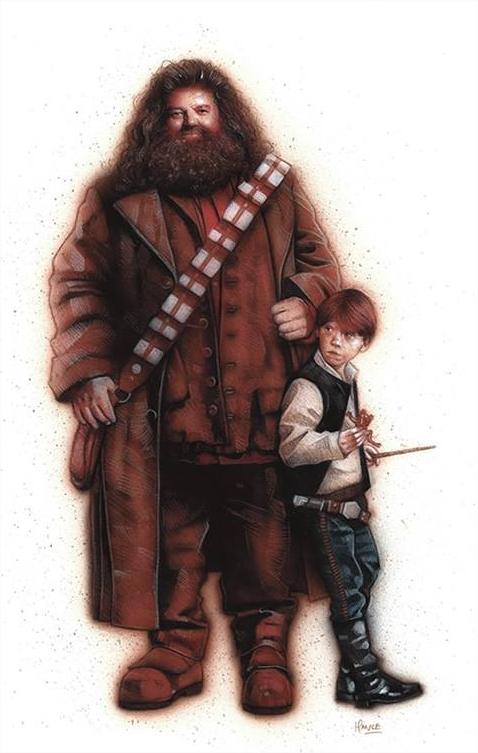 Harry Potter BlogHogwarts Star Wars 2