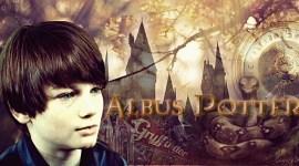 Fanfic: Albus Potter y la Varita Partida – Capítulo 17