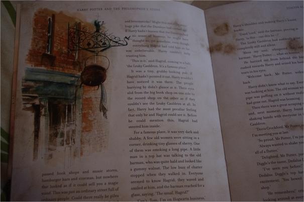 Harry Potter BlogHogwarts Piedra Filosofal Ilustrado (7)
