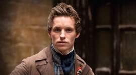 8 Razones por las que Eddie Redmayne sería el Perfecto Newt Scamander