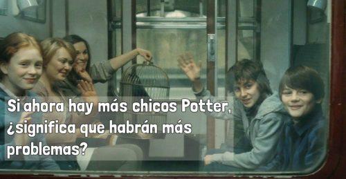 Niños Potter