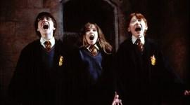Esta teoría sobre los estudiantes de Hogwarts te deprimirá