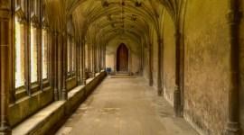 Rumor: Hogwarts podría aparecer en 'Animales Fantásticos 2'