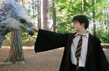 Daniel Radcliffe habla sobre la posibilidad de aparecer en 'Animales Fantásticos'