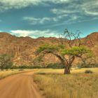 fotos_africa (18)