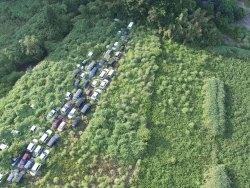 Fotos impressionantes da zona de exclusão de Fukushima sendo tomada pela natureza